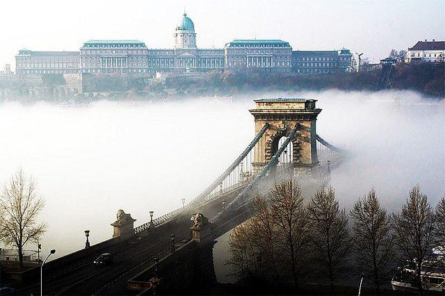 Foggy Danube #Budapest #bridge #fog