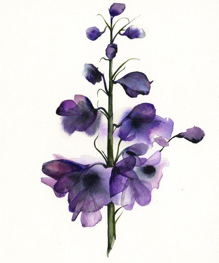 Delphinium - botanical print, watercolor botanical, watercolor flowers, cottage chic. $20.00, via Etsy.