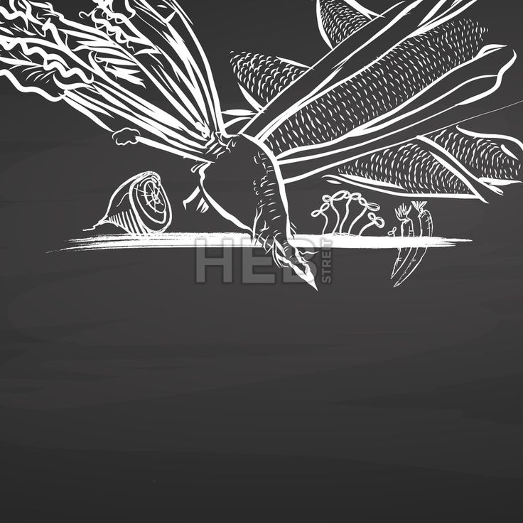 Sugar vegetables drawing on chalkboard. Hand drawn healthy food sketch. Black and White Vector Drawing on Blackboard. ... ... by #Hebstreit