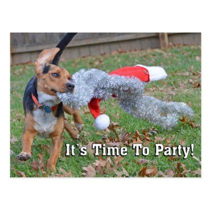 Funny It's Time To Party Christmas Holidays Postcard - postcard post card postcards unique diy cyo customize personalize