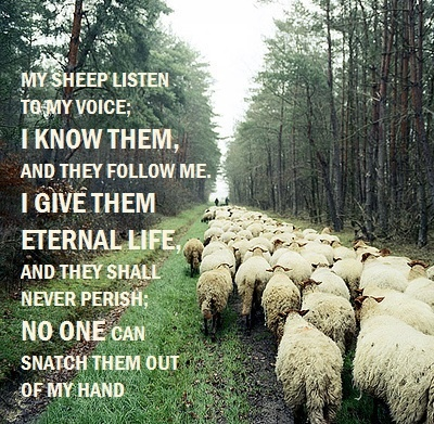 JOHN 10:27-28~My sheep listen to My voice; I know them, and they follow Me, I give them eternal life, and they shall never perish; no one can snatch them out of My hand.
