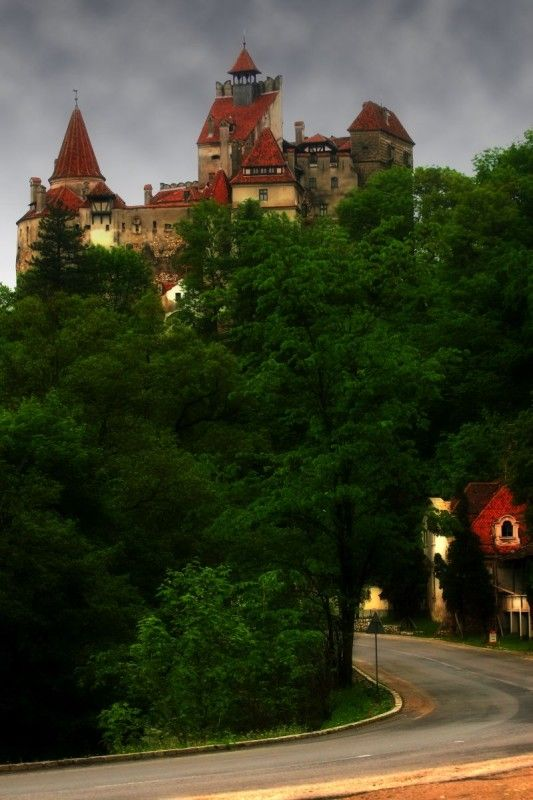 Castle of Vlad the Impaler | Are Vampires Real | Pinterest ...