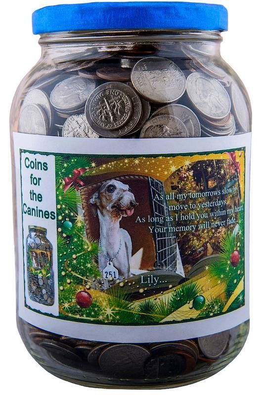 """Participate in our ongoing campaign, """"Coins for the Canines"""" and help make a difference for the mill dogs! Click here for details: http://milldogrescue.org/coins-canines/"""