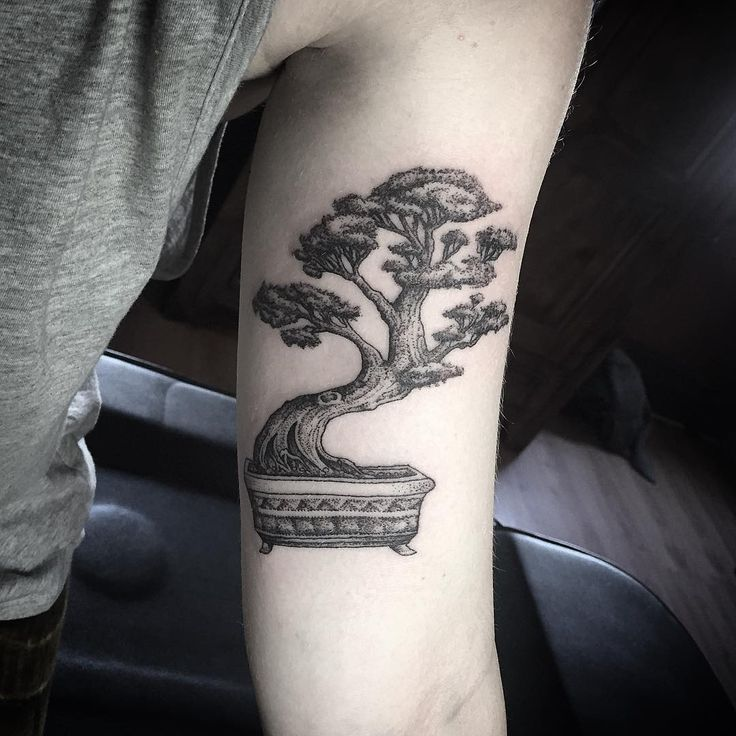 Bonsai tattoo by @Annita Maslov in Melbourn, AU