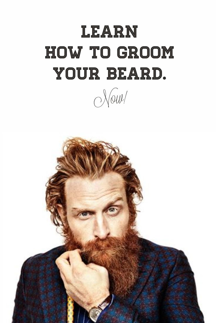 Exact Beard Grooming Guide You are Looking