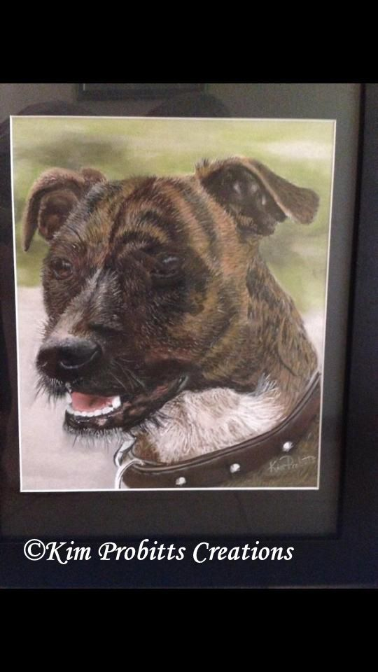 I had to chase this fellow around to get a clear photograph to let me draw him. This was for a special 21st present.