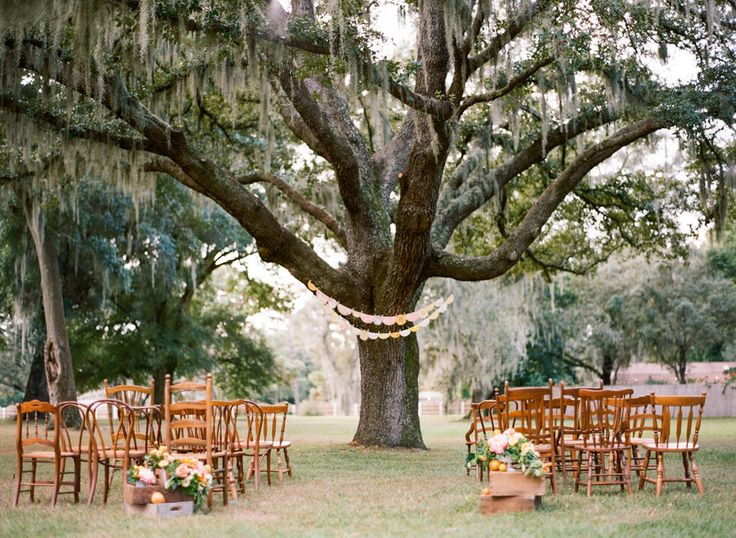 Vintage Outdoor Wedding Ceremony under Spanish Moss Tree with Mis-Matched Wooden Ceremony Chairs   Tampa Bay Rentals by Tufted Vintage Rentals