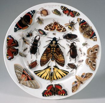 "Lippert & Haas Porcelain Manufactory, Schlaggenwald (Bohemian, active 1832–46), Painted by Johann Zacharias Quast (Austrian, 1814–1891), ""Plate,"" 1840. Hard-paste porcelain. Sterling and Francine Clark Art Institute, Williamstown, Massachusetts. Acquired by the Clark, 1996 (1996.7)"