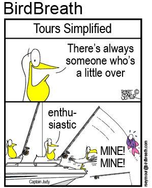 Tours Simplified!!! #birdcartoon #birdbreath #tours #fishing