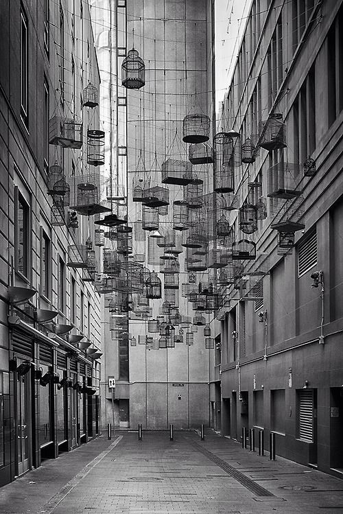 the forgotten songs // installation by michael thomas hill. sydney, australia.