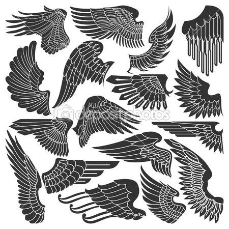 conjunto de dibujos de alas — Vector stock © konahinab #13354976