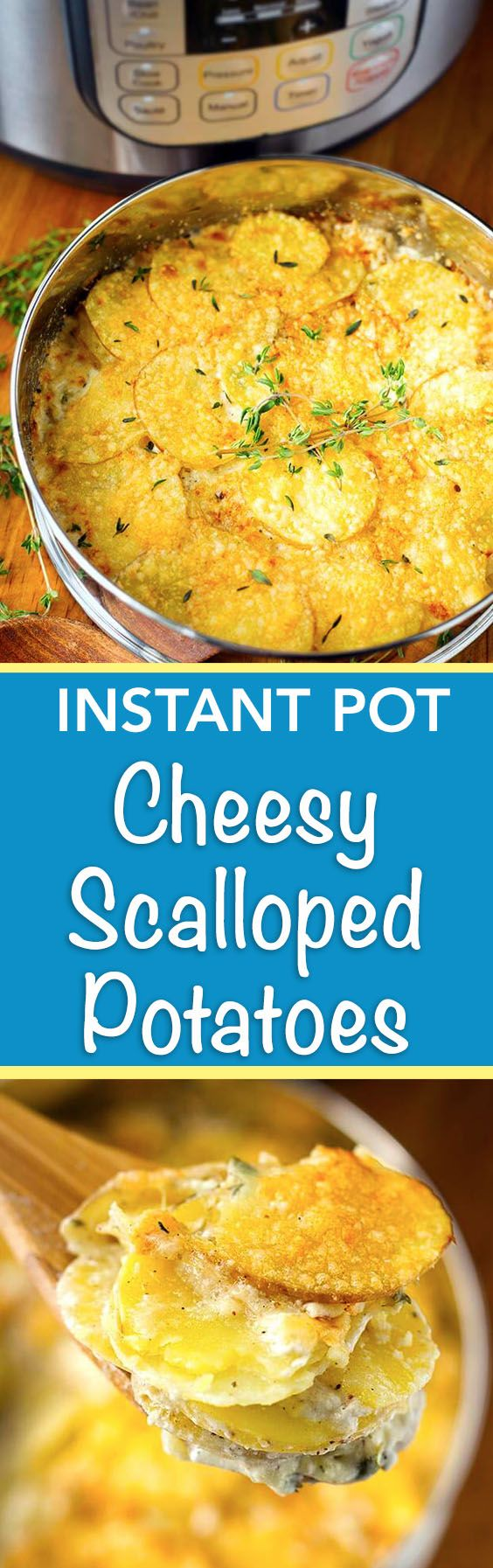 Instant Pot Cheesy Scalloped Potatoes are flavorful with thyme, garlic, and cheese. simplyhappyfoodie.com #instantpotrecipes #instantpot #instantpotscallopedpotatoes #scallopedpotatoes