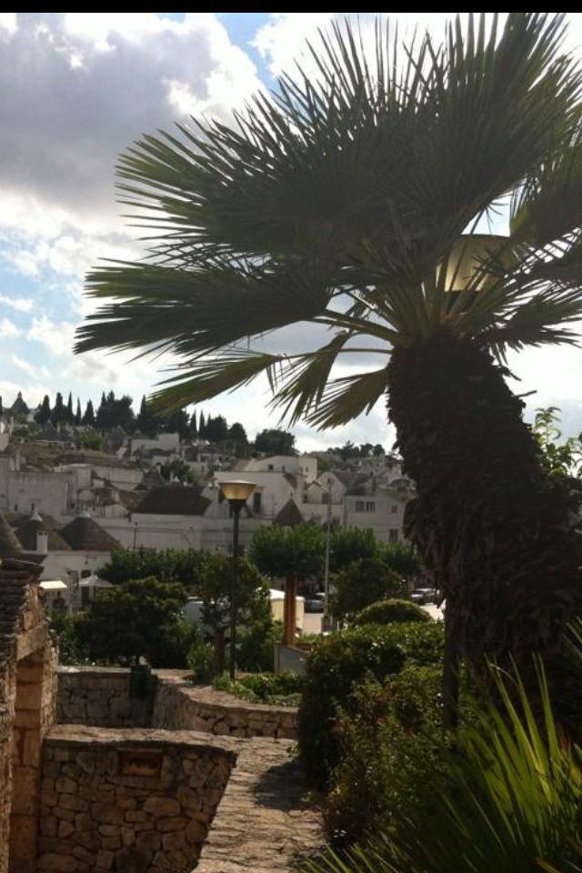 Alberobello si prepara alla Festa Patronale dei Santi Medici. www.alberobello.net/eventi. Da secoli si ripete l'incontro tra Religione, Musica , gastronomia. È una ottima occasione per prenotare un trullo www.trullinet.com/clienti/trulliforrent