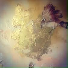 Gocce di mare: Disse il passero all'albero