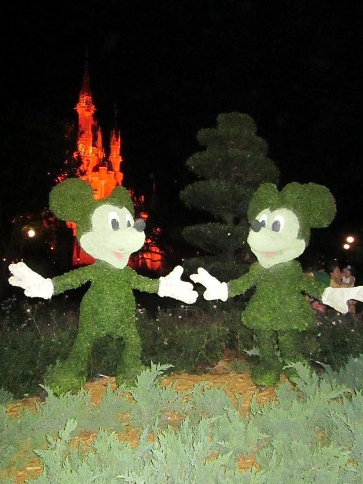 Jardim de Mickey e Minnie.