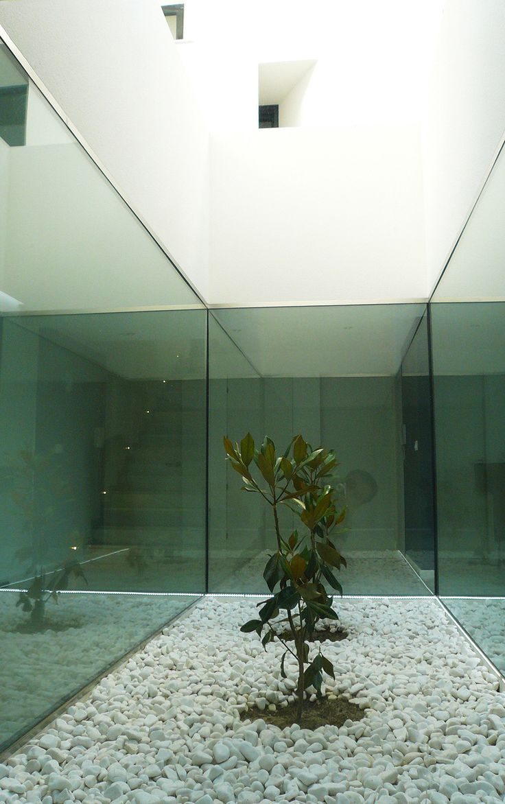 Gallery of Single Family House with Garden / DTR_Studio Arquitectos - 4