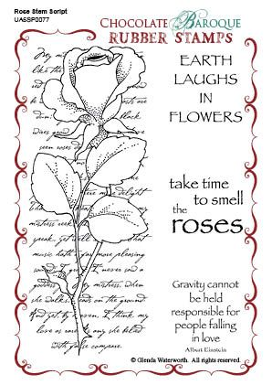 Rose Stem Script - Stamp of the Week