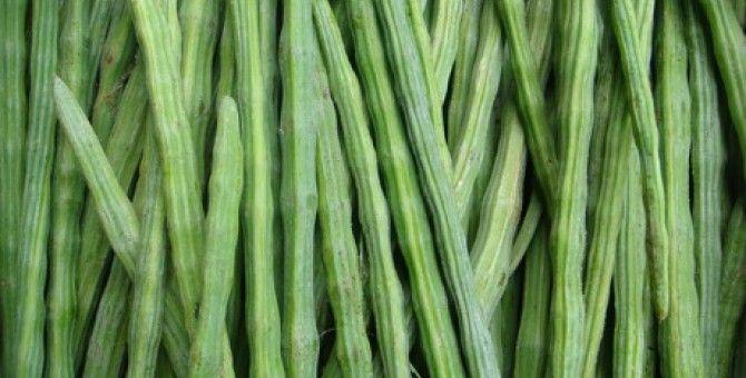 Health Benefits of Drumstick (Moringa Vegetable)