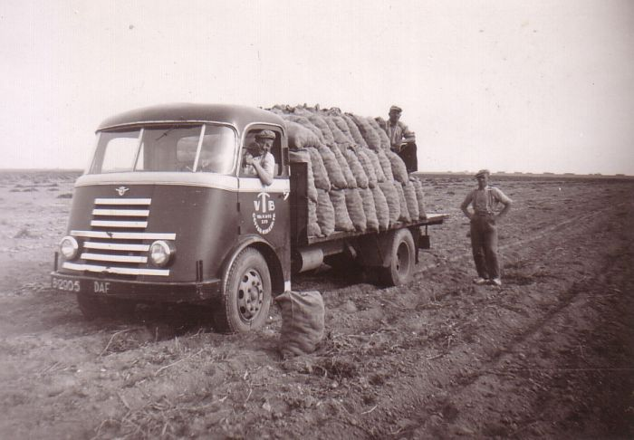 B 12905 DAF aardappels laden in de N.O.P Friese Nummerbewijzen, kentekens voor auto's en motoren 1906-1951