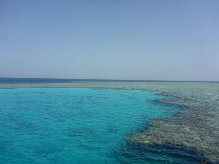 Concorde Moreen Beach Resort & Spa Marsa Alam 5* (Марса-Алам) - отзывы, фото и сравнение цен - TripAdvisor