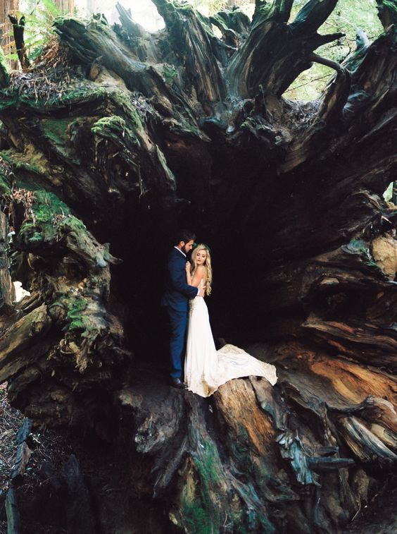 magical engagement photo in the california redwood forests