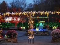 An outdoor patio at Brookside Gardens becomes as festive as a carnival midway with its combination of colored lights and shrubs with blooming flowers.