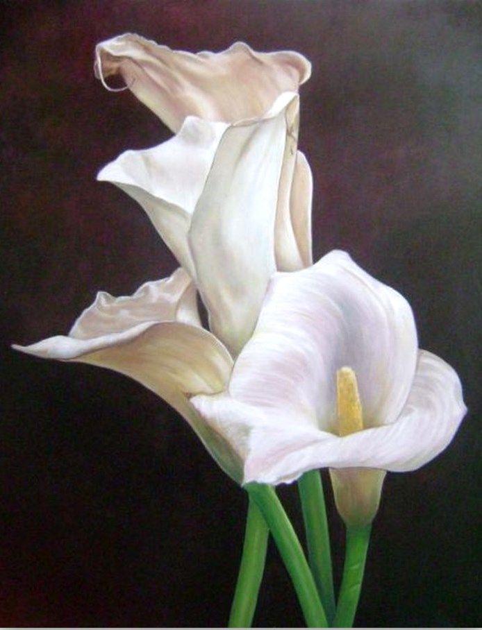 cuadros de flores gigantes buscar con google