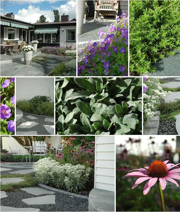Järfalla garden, slate and gravel, flower beds, echinacea, geranium, grey
