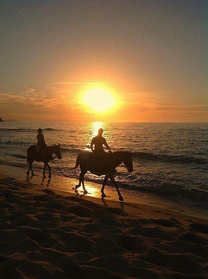 passeggiata a cavallo sulla spiaggia al tramonto
