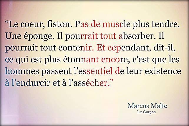 Marcus Malte. Le Garçon.