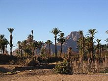 An oasis in the Hoggar
