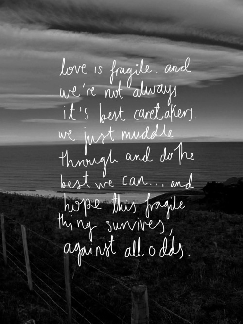 Nicholas Sparks Quote, Love is fragile. And we're not always the best caretakers. We just muddle through and do the best we can and hope this fragile thing survives against all odds. #thelastsong