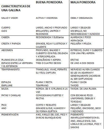 Consultoria Experta en negocios de Agricultura, Ganaderia y Forestales: GALLINAS EN PASTOREO PARA PRODUCCIÓN DE HUEVO Y LA ENGORDA DE POLLOS Y GUAJOLOTES ES UNA ALTERNATIVA VIABLE, SUSTENTABLE Y ECONÓMICAMENTE RENTABLE EN MEXICO Y EL MUNDO.
