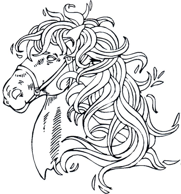Horses 20 Adult Coloring Pages