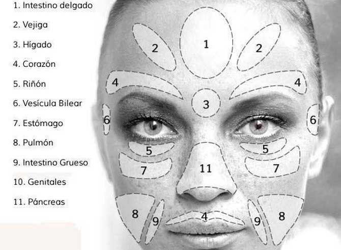 Todo este proceso de masajes y presión sobre estos puntos se traducen en la liberación de endorfinas. Las enforfinas son neurotransmisores que se producen en el sistema nervioso.