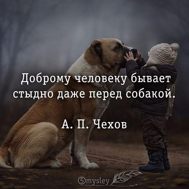 #5mysley #мысли #философия #цитата