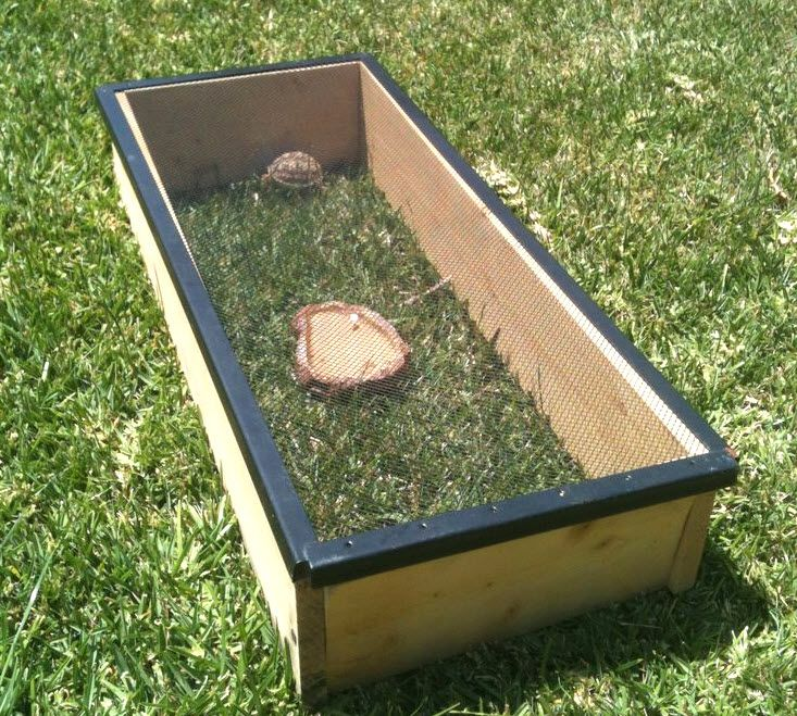 1000 Images About Tortoise Inside And Outside Habitat Ideas On Pinterest Tortoise House Red