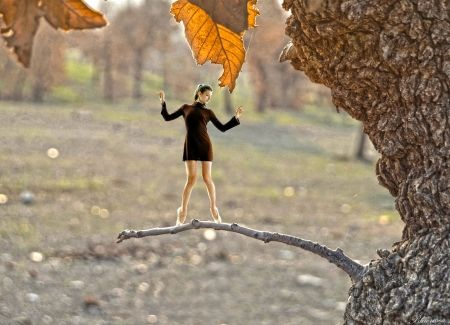 Balance... - autumn, fantasy, hq, girl, moments, ballerina, tree, branch, hdr