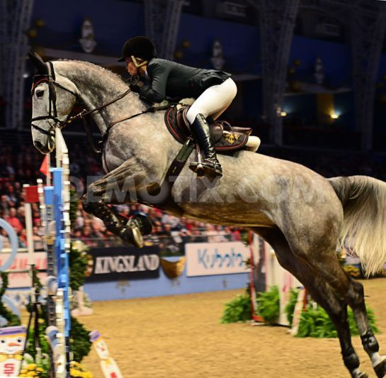 The London International Horse Show Services Jumping at Olympia Hall Thought this photo was a cool angle.
