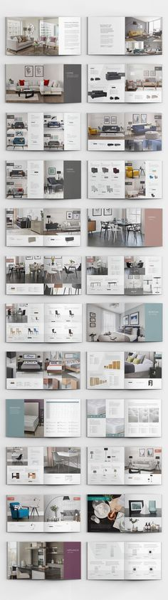 David Phillips Product Catalogue 2016 & Rollup Banners on Behance