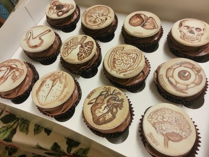 A Pathologist's Dozen: This set of twelve cupcakes by Tattoo Cakes depict historical illustrations of human anatomy.