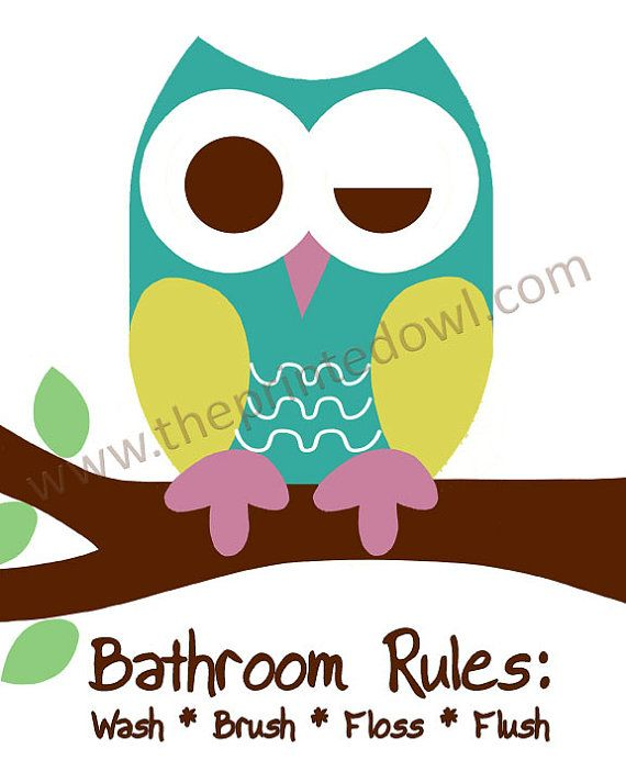 Set of 4  8x10 prints Bathroom Rules Owl Prints goes well with Saturday Knight Owl bathroom set