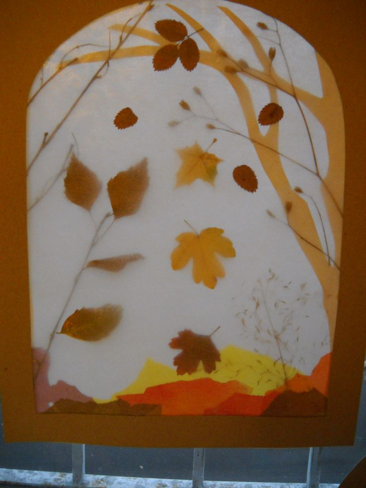 Autumn ~ Leaf ~ transparency