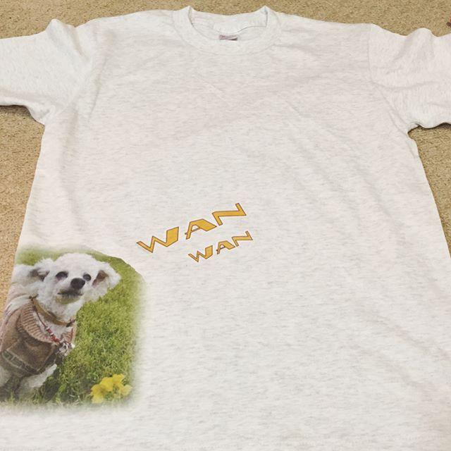 今日は、夜な夜な、 Tシャツを作った。 でも、 納得いくものができず、 達成感得られず・・・(ŏ﹏ŏ。) ・ 初めて作ったから、 要領がつかめず、失敗。 また、リベンジするぞ!! あぁー、く゛や゛し゛い゛よ゛お゛ぉ゛ぉ゛。 ・ ・ #tshirt #tシャツ #手作り #handmade #アイロンプリント #大失敗 #また作りたいー! #写真はTシャツの表裏 #こうしていずもがいっぱいになるのです #あっもちろんこれ着ますよ(笑) #トイプードル #プードル #シニア犬19歳 #シニア犬 #老犬 #わんこ #愛犬 #親ばか #立ち耳プードル #わんわん