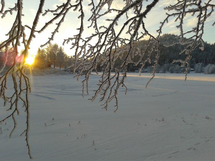 Immeljärvi marraskuussa. Immeljärvi Lake in November as the sun still rises over the horizon.