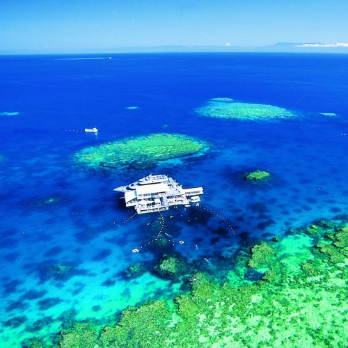This is where we snorkeled with the Quicksilver crew... Great Barrier Reef, Port Douglas, Australia