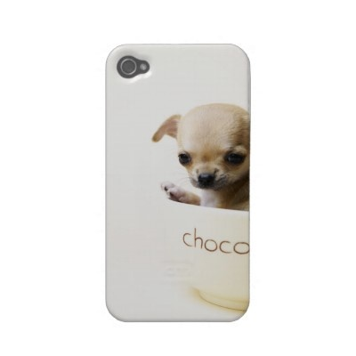Chihuahua puppy in bowl (cropped) iphone 4 case by prophoto