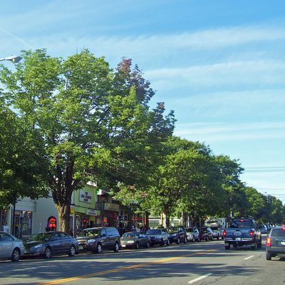 Lake George Village attracts thousands of visitors each summer thanks to its location near the Adirondack Forest Preserve, the largest park preserve in the continental United States. This eastern New ...
