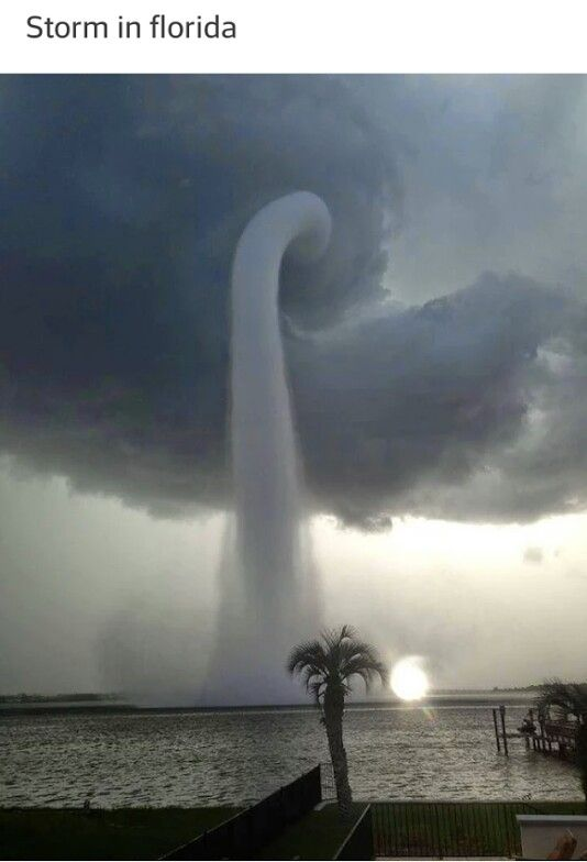 Storm in Florida!!! No, someone get The Order, Death Eaters are making a comeback!!!