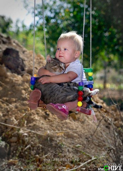 too cute child & cat on swing